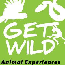 Wild get Outdoor Adventures